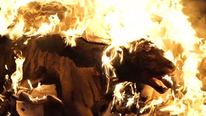 Las autoridades indonesias queman un tigre disecado y otros objetos de contrabando