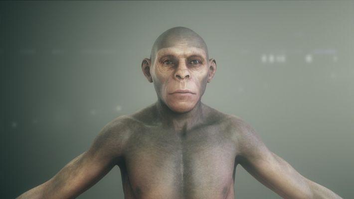 Los orígenes humanos