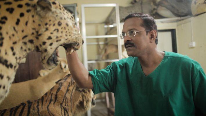 Este taxidermista autodidacta podría ser el último de la India