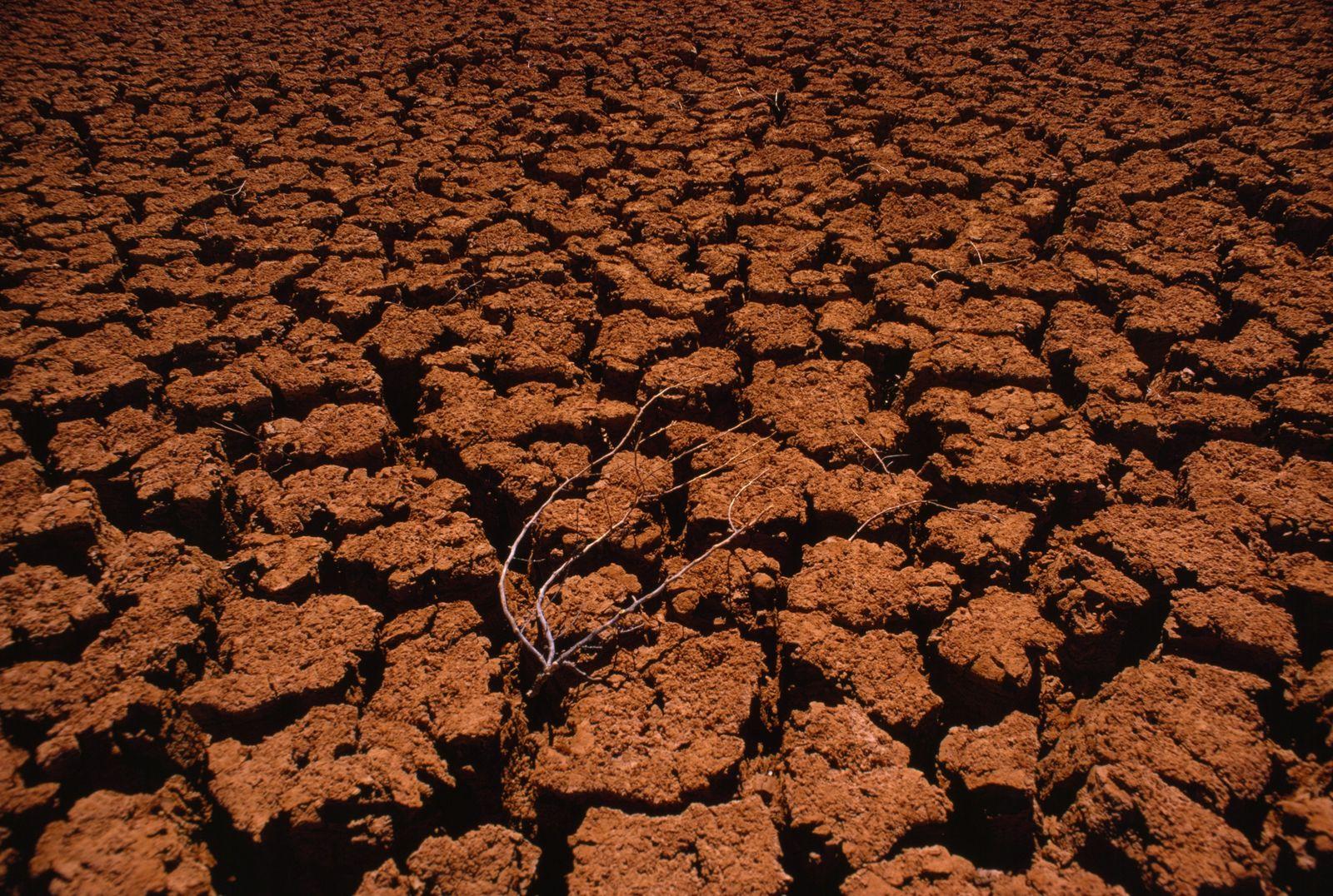 Sequías, clima extremo y hambrunas: el cambio climático afectará gravemente al Mediterráneo