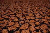 Mediterraneo  cambio climático
