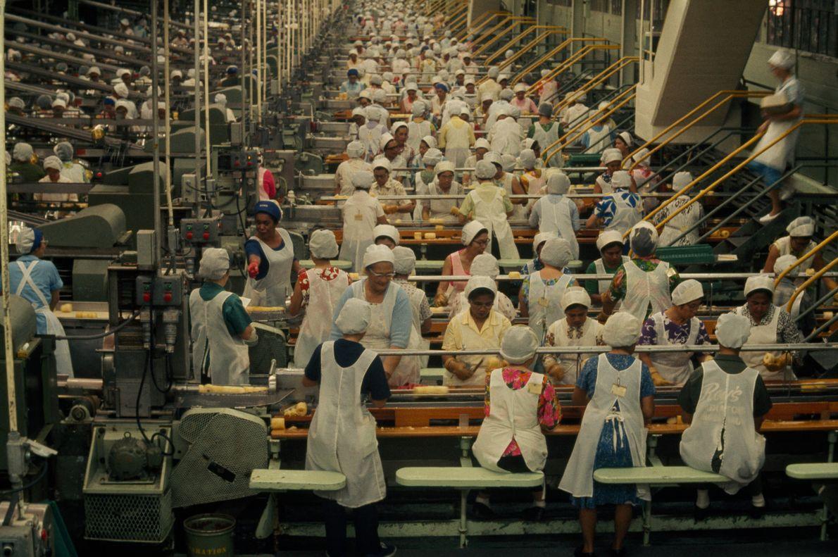 Imagen de mujeres con delantales y redecillas en la cabeza trabajando en una cadena de industrial ...
