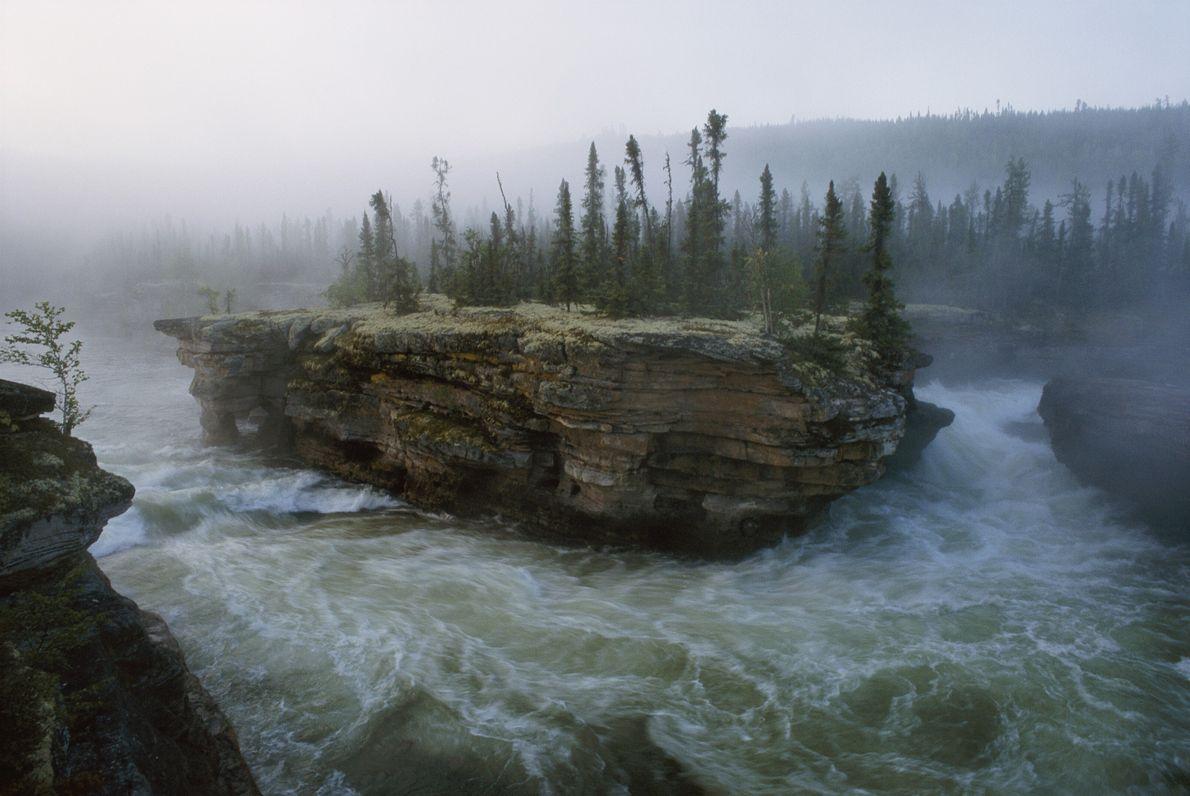 Imagen del una catarata de un río fluyendo alrededor de una pequeña isla llena de pinos ...