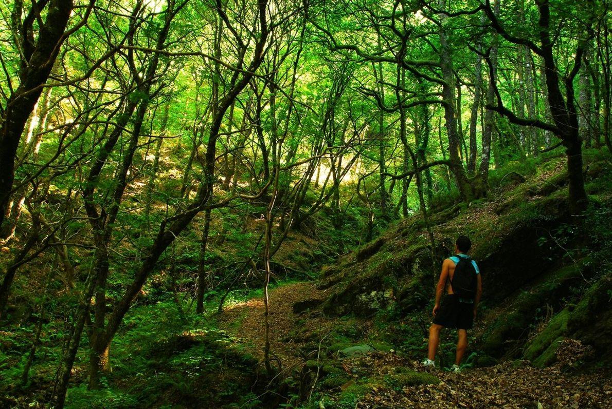 Turismo Asturias 09