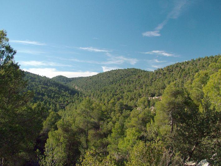 Sierra de Burete