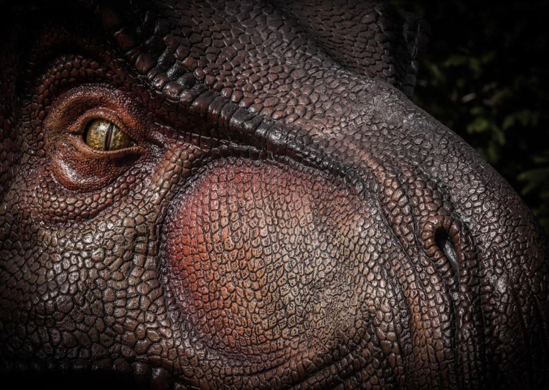 Tiranosaurio rex olfato