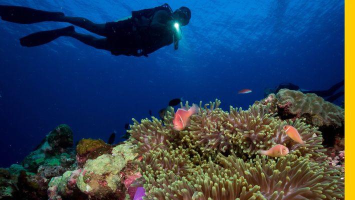 Descubre las impresionantes maravillas de Papúa Nueva Guinea