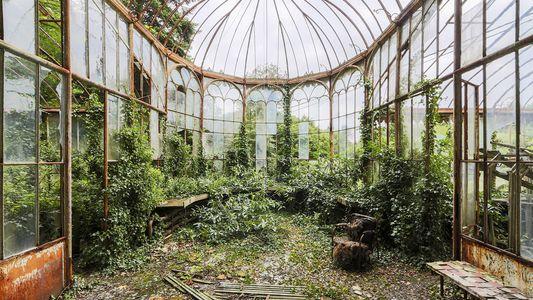 La naturaleza reclama estos lugares abandonados