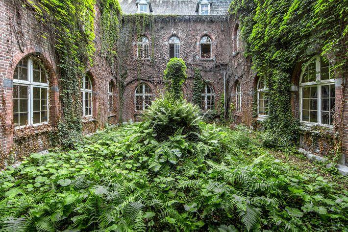 Monasterio, Bélgica