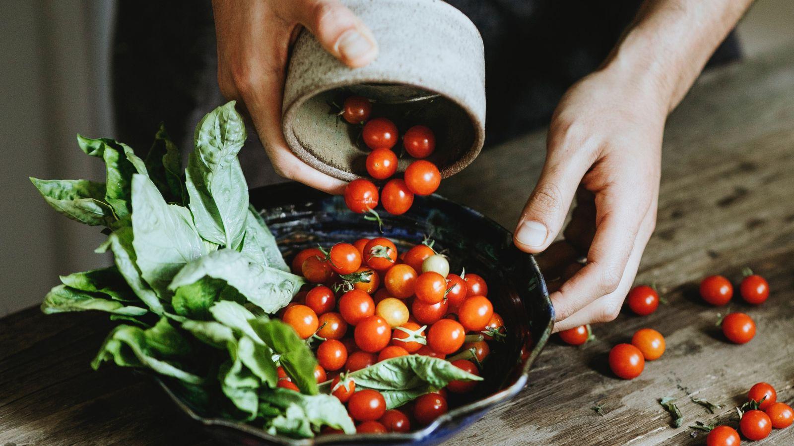 Alimentacion vegetariano