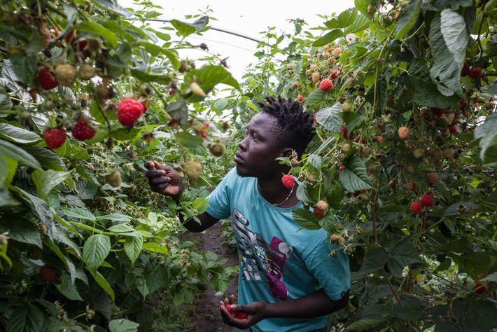 Joven de Senegal