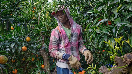 Los inmigrantes africanos en Europa cambian unas dificultades por otras