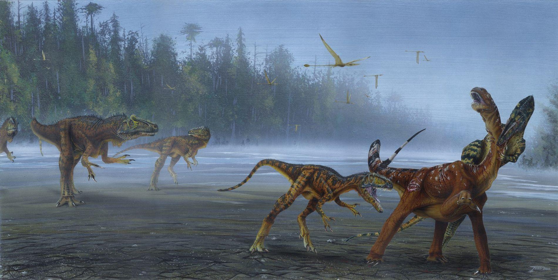 Allosaurus 01
