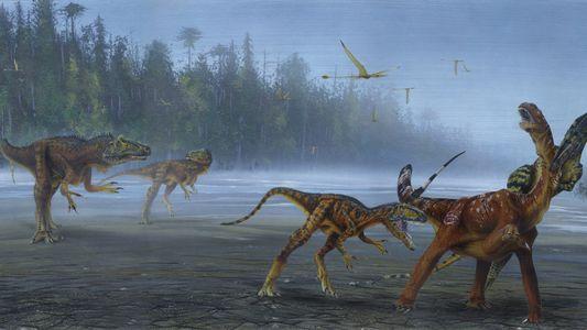 Descubren una nueva especie de dinosaurio carnívoro