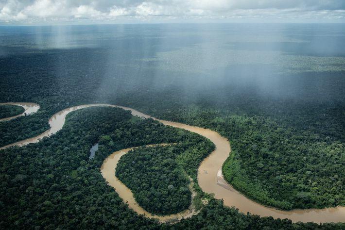 Cabecera del río Curanja