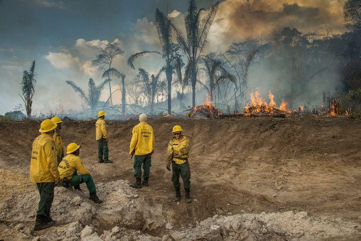 Un equipo de bomberos