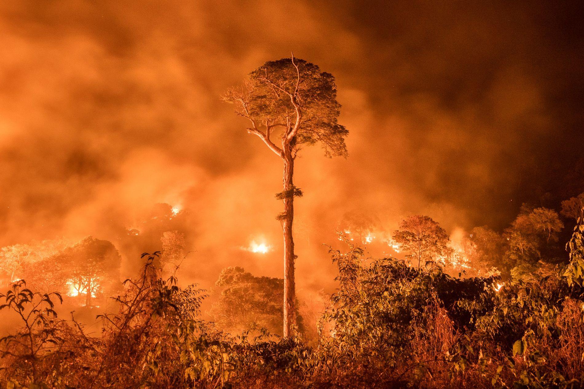 Incendio en Maranhão