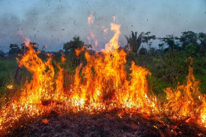 Un incendio