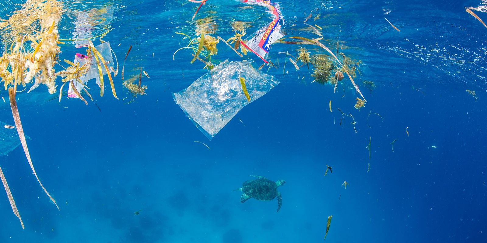 El plástico abarca el 95% de los residuos del Mediterráneo