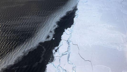 El hielo marino en la Antártida alcanza un mínimo histórico