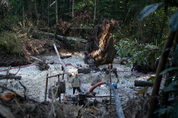 Extracción ilegal de oro en la zona del Territorio Indígena Munduruku