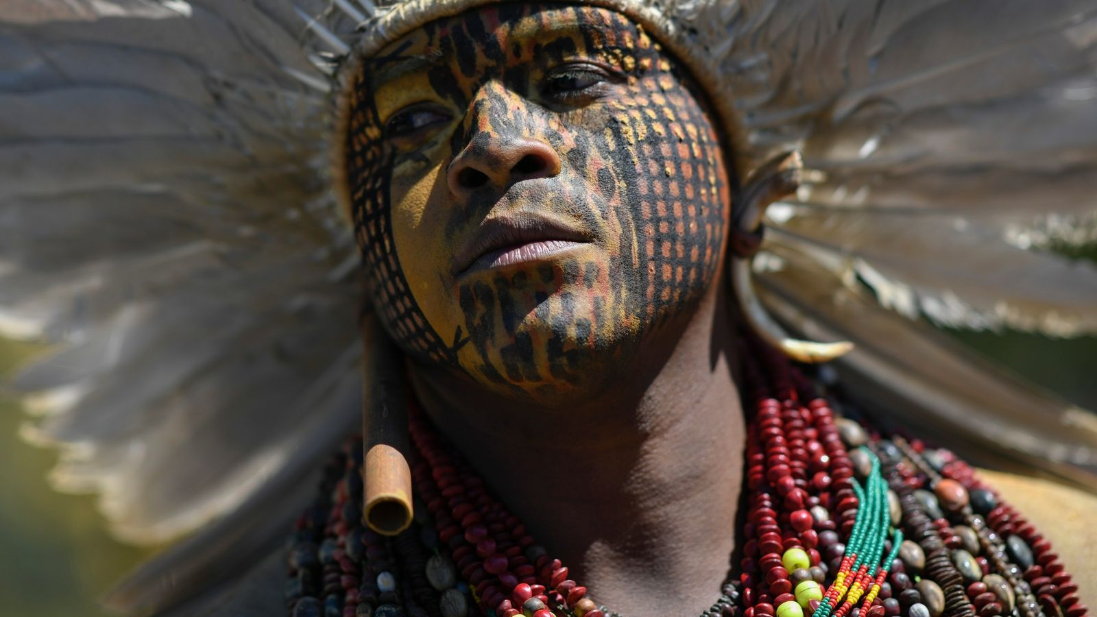 Un manifestante indígena