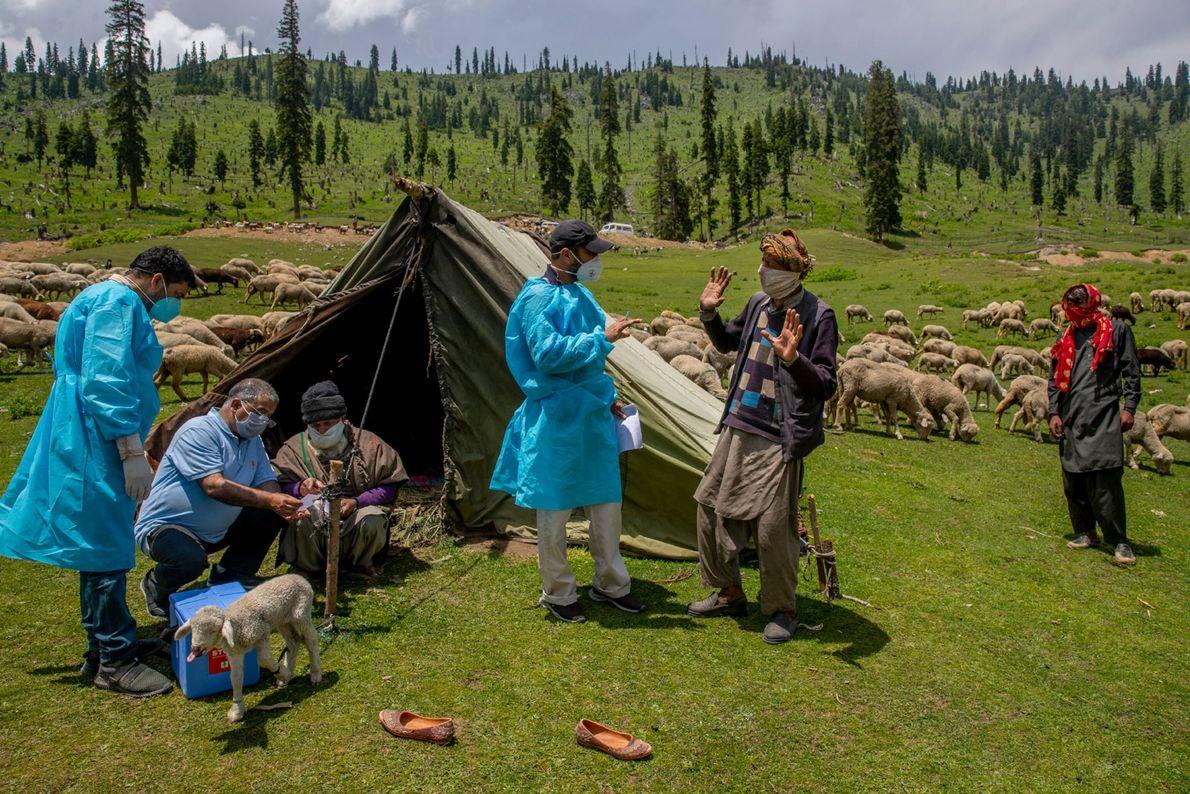 Vacunación en Cachemira