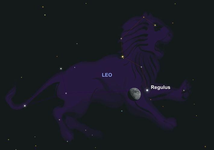 La luna gibosa creciente y Leo