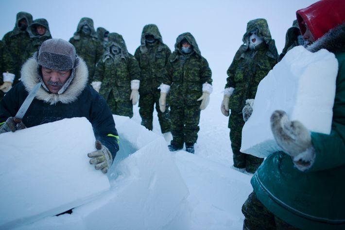 Alto Ártico