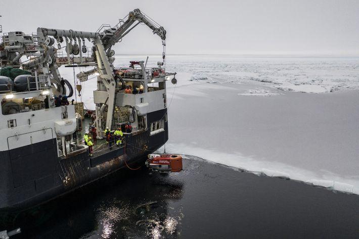 Nereid Under Ice