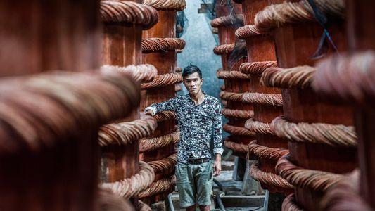 Vietnam desde el cielo y la tierra