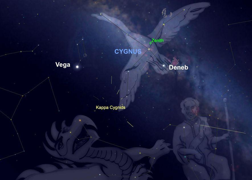 La lluvia de meteoros de las Kappa Cígnidas parecerá irradiar de la constelación Cygnus el día ...