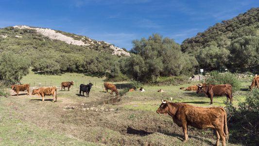 España: ¿se agotará nuestra agua?