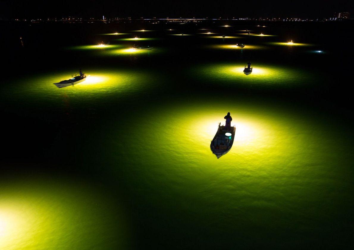 Las luces de las embarcaciones sirven como reclamo para las anguilas de Shirasu en Tokushima, Japón. …