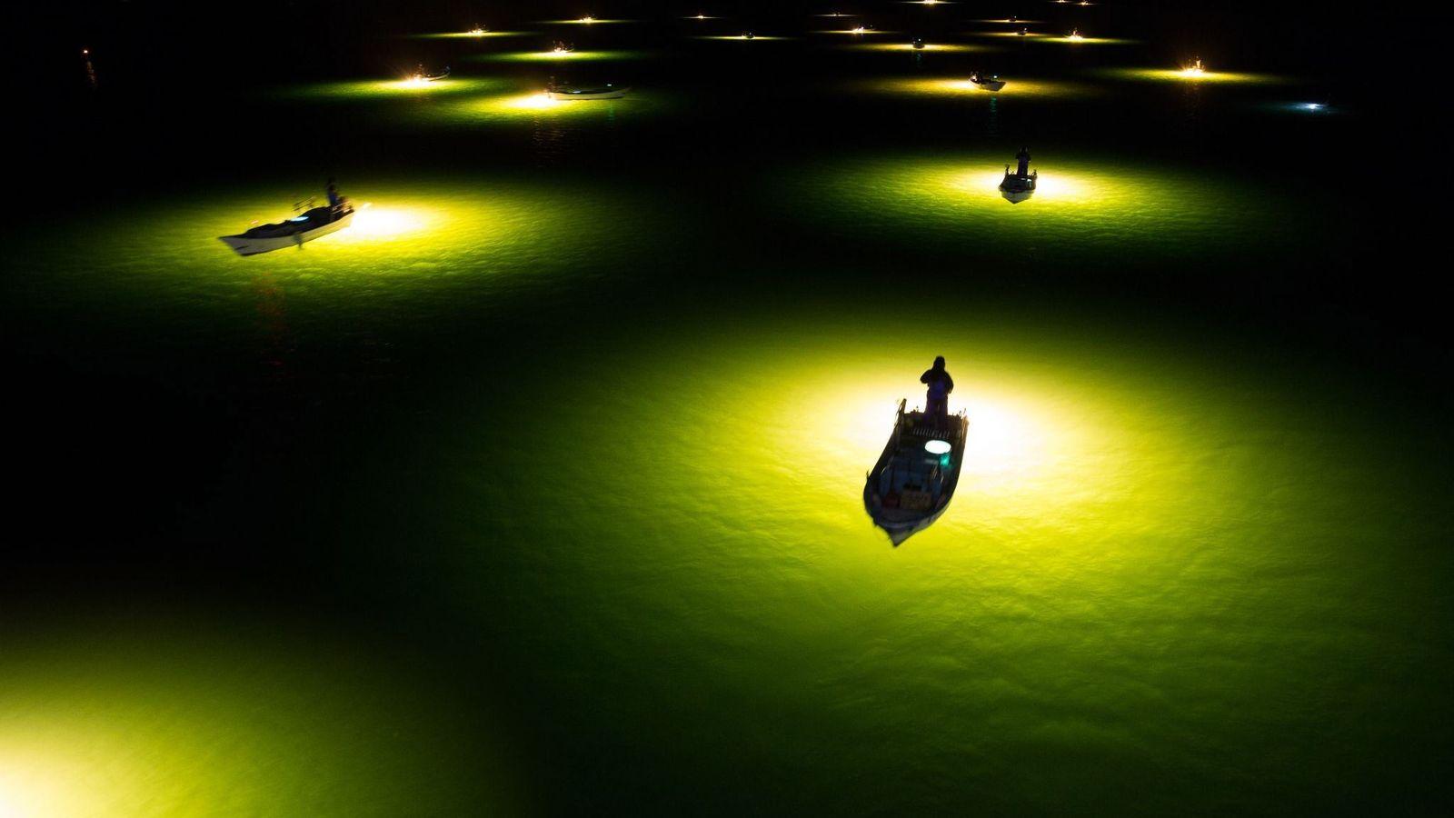 Guiadas por la luz