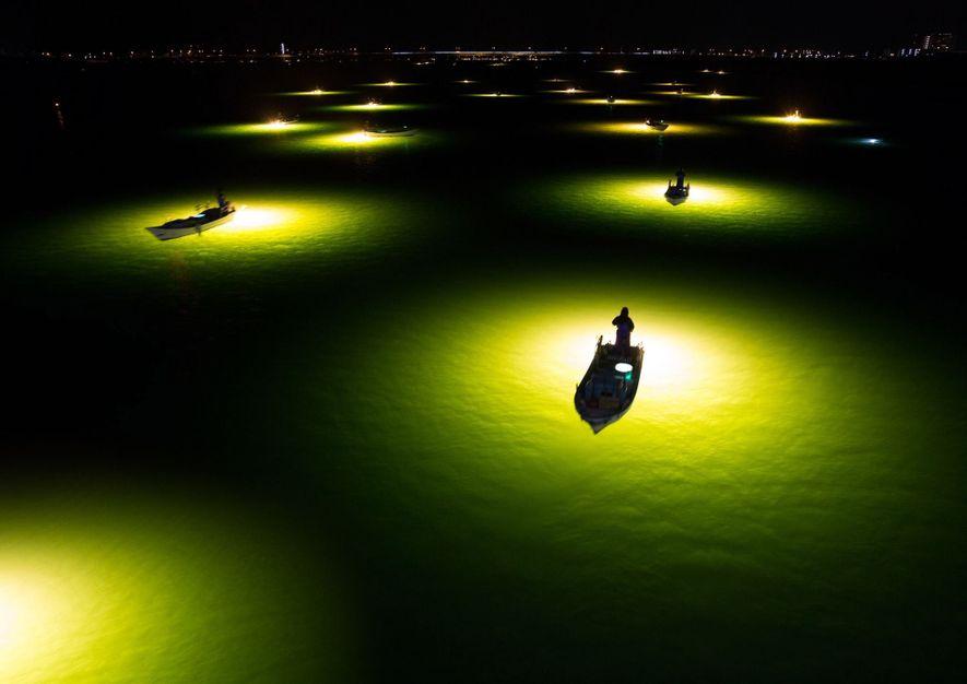 Las luces de las embarcaciones sirven como reclamo para las anguilas de Shirasu en Tokushima, Japón. ...