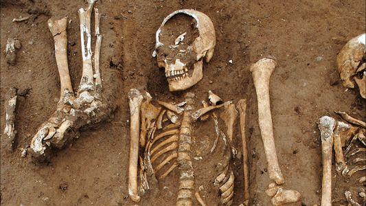El descubrimiento de una fosa común muestra la devastación de la Peste Negra en la Inglaterra ...