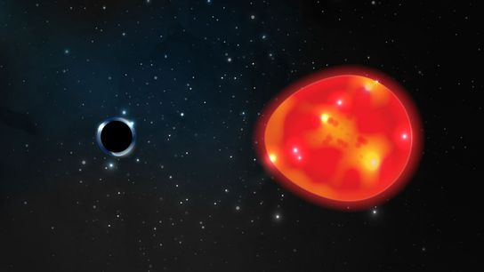 Un pequeño agujero negro orbita con una estrella gigante roja