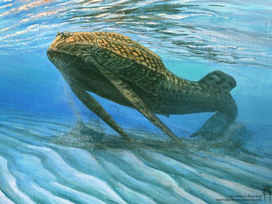 Los huesos evolucionaron para funcionar como baterías, según sugieren peces de 400 millones de años