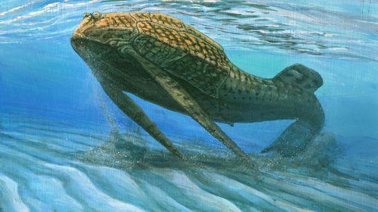 Ilustración de un Bothriolepis