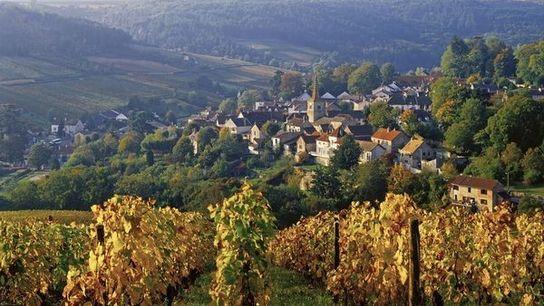 Côte d'Or, Borgoña, Francia