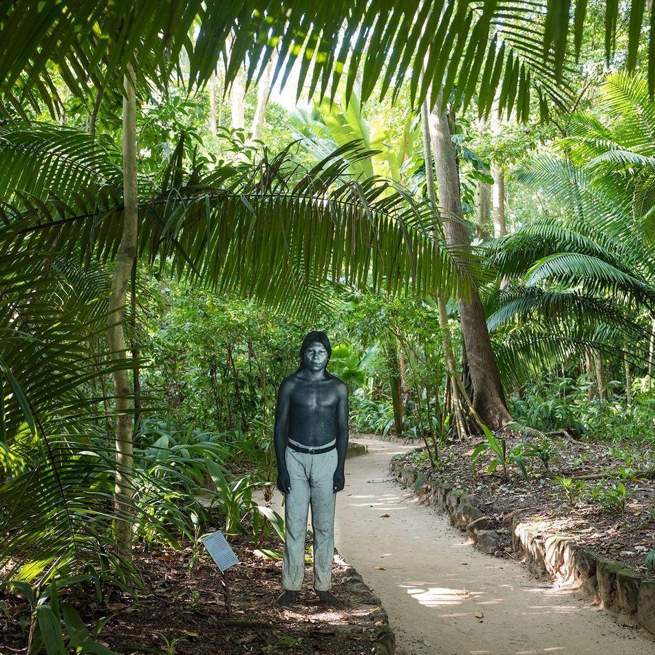 Una catástrofe se cierne sobre las tribus amazónicas conforme se multiplican los casos de COVID-19