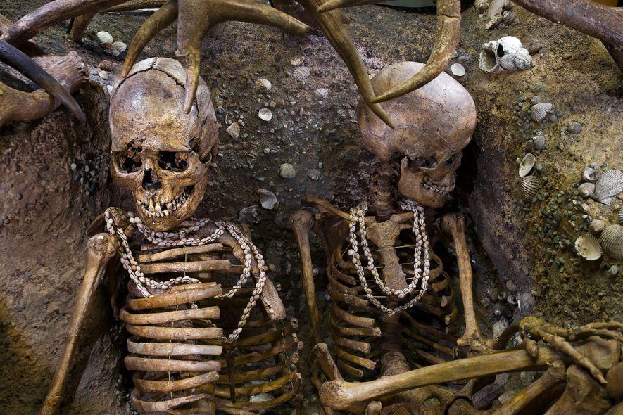 Restos óseos prehistóricos.