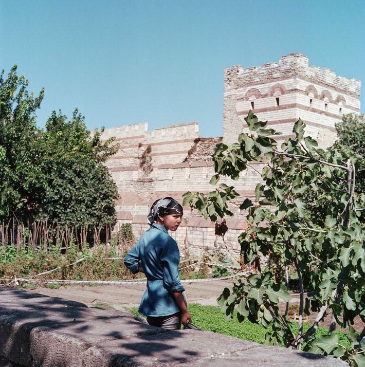 Huertos en las murallas de Teodosio