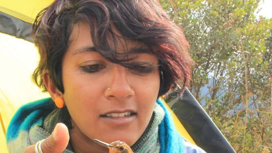 Aula Nat Geo Explorer: la bióloga Anusha Shankar nos descubre en directo la vida secreta de ...