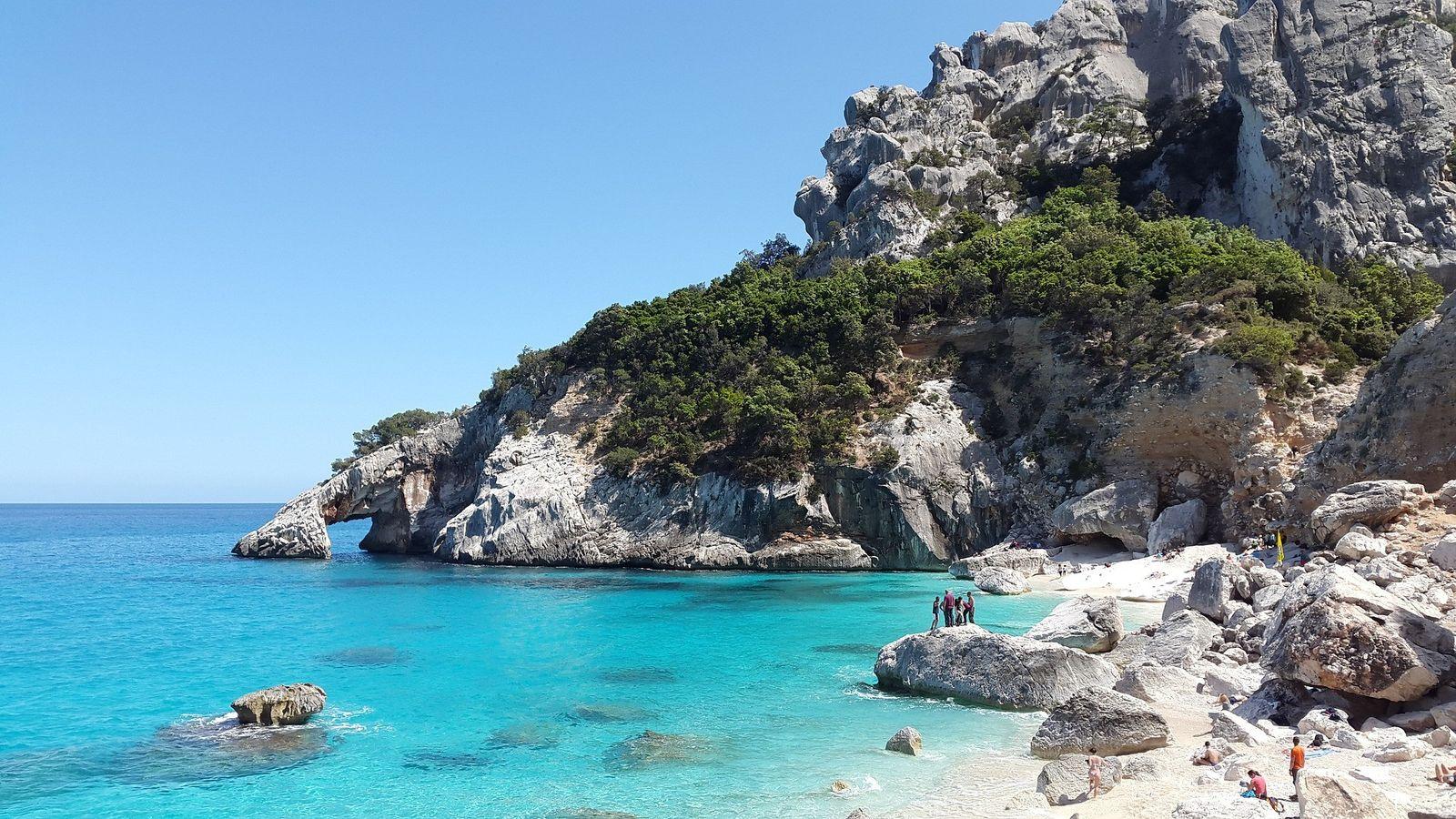 Salvemos nuestro Mediterráneo zonas muertas
