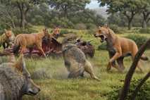 Ilustración de lobos terribles