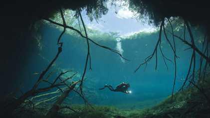 Visita estas asombrosas cueva subacuáticas en la península de Yucatán
