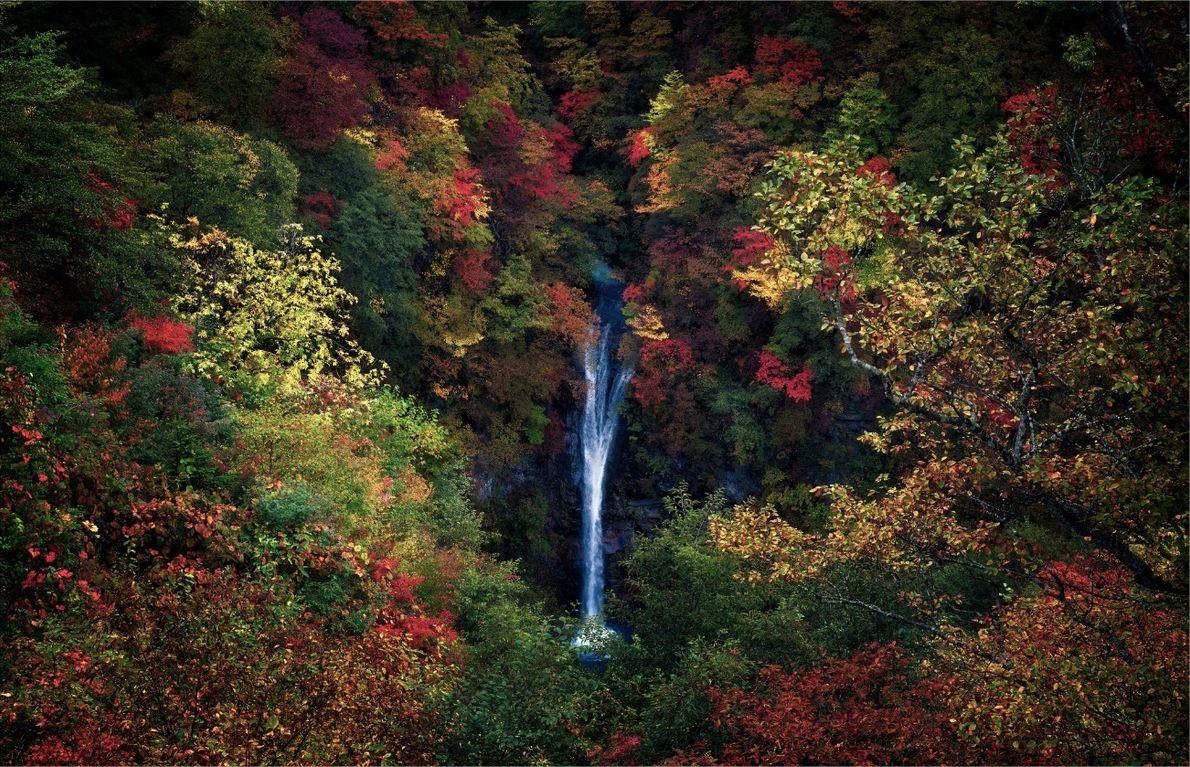 Cascada de otoño