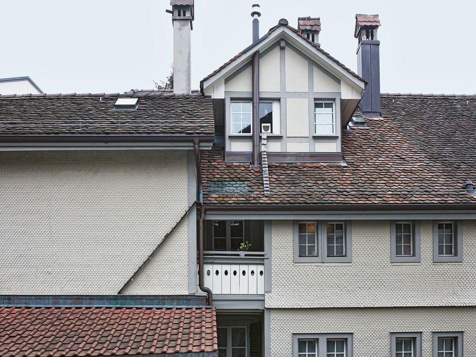 En Suiza, los gatos tienen escaleras propias